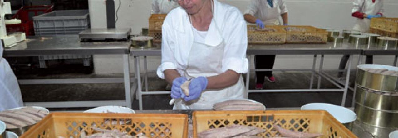 O bom atum da Região e a forma tradicional de o laborar são os segredos dos Açores que cada lata da Corretora leva dentro