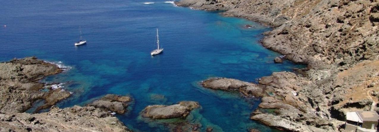 Ilhas Selvagens apresentam o ecossistema mais intacto do Atlântico