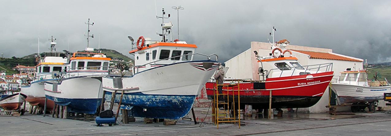 Governo dos Açores reivindica à Comissão Europeia regime de exceção ao sistema de substituição da frota de pesca