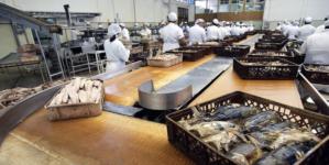 Governo Regional acompanha de perto processo para construção da nova fábrica da COFACO no Pico