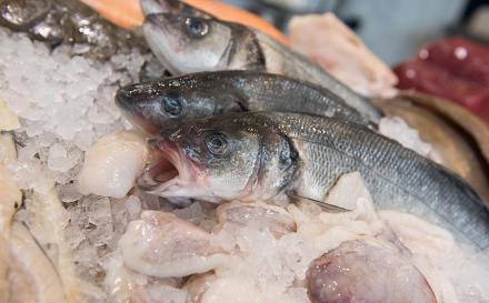 Cinco dicas para escolher bem o peixe