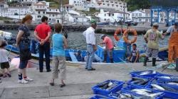 Campanha 'Pesca Segura' arrancou hoje no porto da Ribeira Quente, em São Miguel
