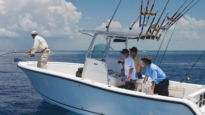 Associação de Pesca Lúdica dos Açores já fez o pedido de registo oficial