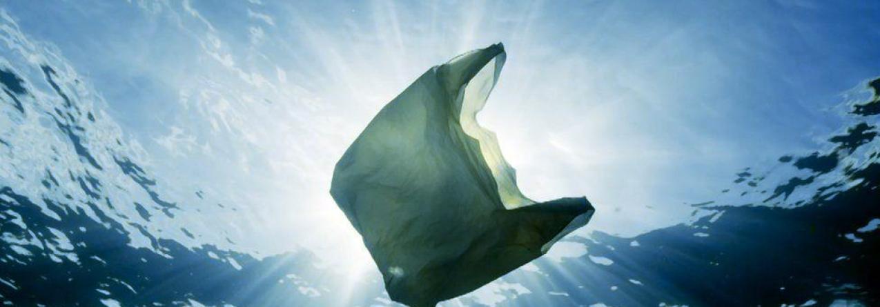 Comissão Europeia quer acabar com plástico descartável até 2030