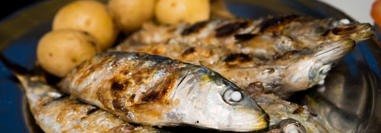 Comer peixe pode reduzir risco de esclerose múltipla