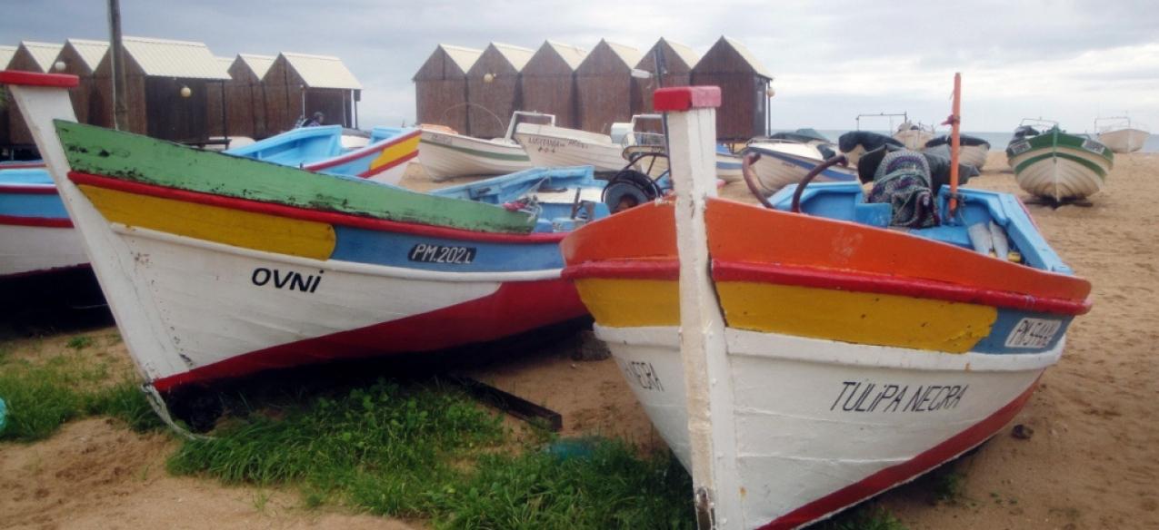 Universidade do Algarve // Pesca artesanal «só terá futuro com uma alteração da mentalidade dos pescadores»