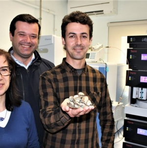Universidade de Aveiro desenvolve 'detective' de bivalves