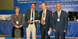 Declaração dos Açores para a Defesa da Pesca de Atum de Salto e Vara vai ter plataforma online