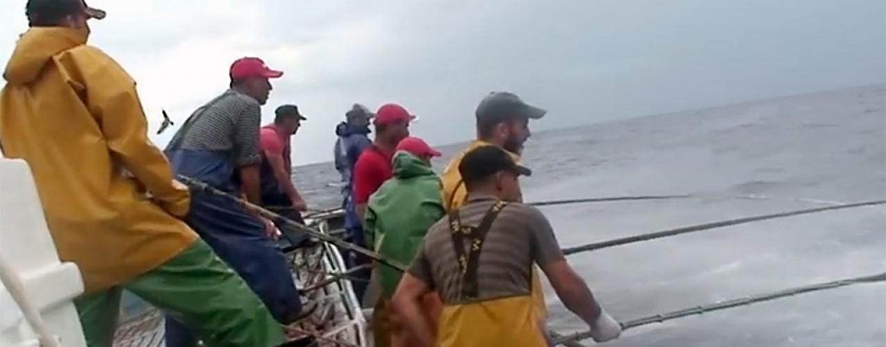Açores: Regulamento do Regime de Apoio à Mobilidade de Pescadores para 2018 foi aprovado hoje