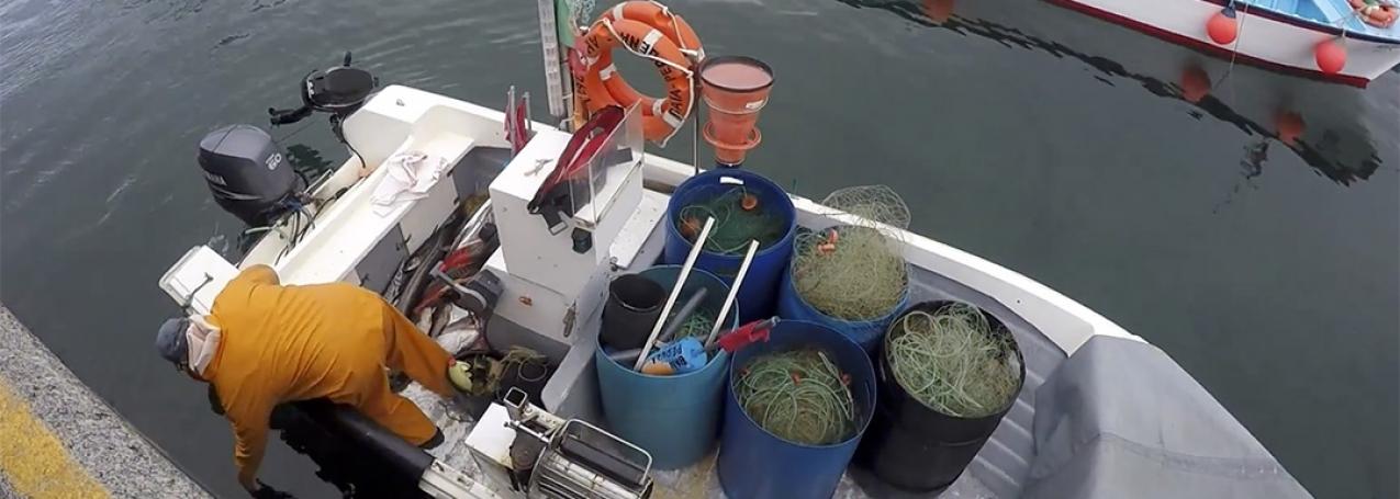 Pescadores e armadores duvidam do salário mínimo (Som)