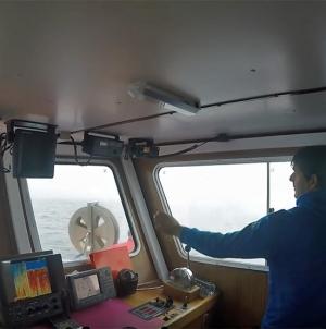 Açores: Frotas de pesca costeira aproveitam o bom tempo e afastam-se da costa sem problemas a registar