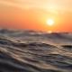 Biosfera 583 – Um oceano sem oxigénio (vídeo)