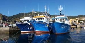 Atuneiros madeirenses e açorianos reclamam falta de colaboração no porto do Caniçal na Madeira