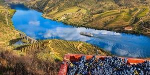 Via navegável do Douro chega ao máximo histórico de 1,2 milhões de turistas
