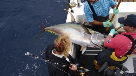 Projeto Tuna Route promove a criação de Rota Internacional do Atum