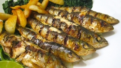 Portugal consome menos 63% de sardinha do que em 2012 — mas ganha mais em exportações