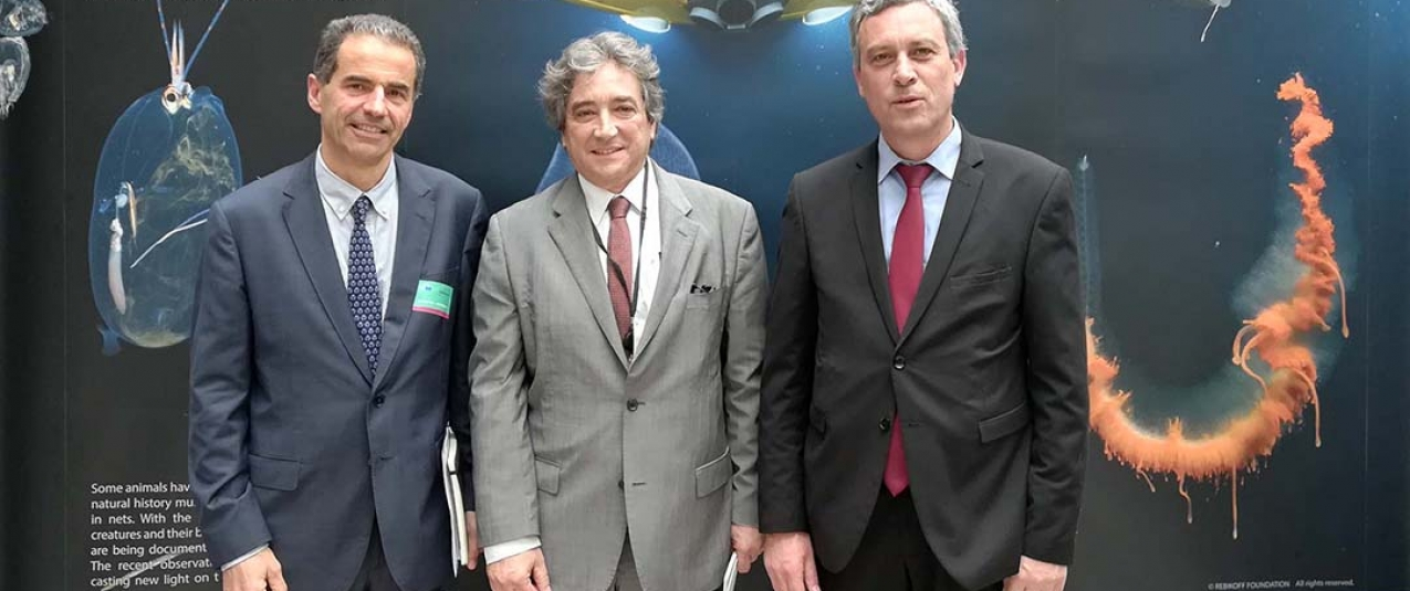 Bruxelas: Gui Menezes afirma que os Açores têm sido percursores na defesa do mar profundo