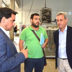 Açores: Atuneiros com mais de 20 metros vão ter limite de captura de 25 toneladas de patudo por cada período de quatro dias