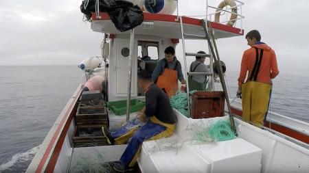 Programa de recolha de dados das pescas continua sem funcionar nos Açores