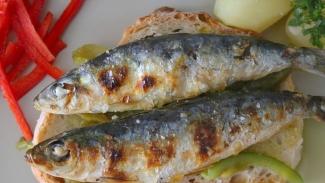 Uma sardinha no pão chega a custar 5 euros no Santo António