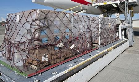 A ACPA lamenta a suspensão da operação do avião cargueiro do consórcio Madeira Air Integrated Solutions (MAIS)