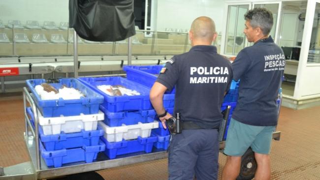 Apreensão de cerca de 300kg de pescado na Ilha Terceira