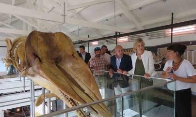 Fábrica da Baleia de Porto Pim, na Horta, valoriza o património e representa um contributo diferenciador para o turismo regional