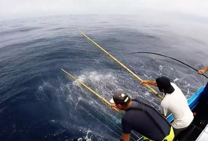 Lotaçor subscreve Declaração dos Açores de apoio à pesca do atum com salto e vara