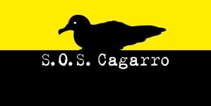 'SOS Cagarro Móvel' e galardão 'Cagarro D'Ouro' são novidades na campanha de salvamento da ave marinha mais emblemática dos Açores