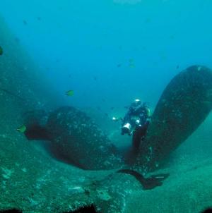 Roteiro do Património Subaquático dos Açores pode render 35 milhões por ano, garante José Luís Neto