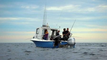 Federação das Pescas dos Açores quer ser parceira na discussão da legislação que regula a pesca lúdica