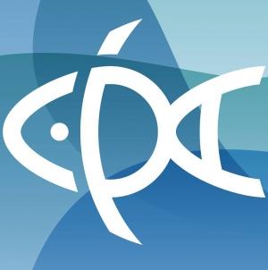 Cooperativa de Pesca Açoriana abre peixaria em Lisboa com peixe fresco a preços acessíveis