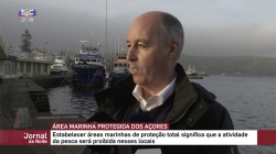 Açores vão triplicar áreas marinhas protegidas nos próximos 3 anos