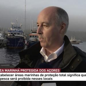 Açores vão triplicar áreas marinhas protegidas nos próximos 3 anos