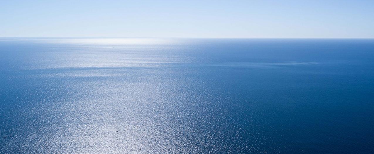 Governo dos Açores apresenta proposta de criação de área de restrição à pesca nos bancos submarinos Mar da Prata e Princesa Alice