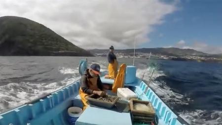Governo dos Açores define modelo gestão da quota de goraz para 2020