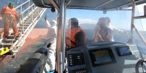 Autoridade Marítima Nacional auxilia tripulante polaco ao largo do porto de Ponta Delgada