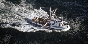 Covid-19 // Marrocos com severas restrições aos barcos de pesca estrangeiros