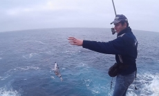 Covid-19 // Governo dos Açores autoriza pesca comercial apeada durante os próximos três meses
