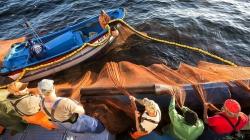 Covid-19 // Quando «o risco já não compensa»: a pesca em tempos de pandemia