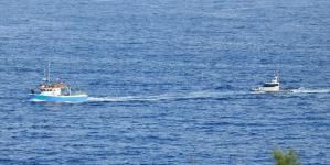 Polícia Marítima da Horta apreende 700 quilos de pescado capturado na área protegida do Banco Condor
