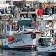 Impactos da pandemia nos sectores da pesca e aquicultura em Portugal