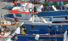 Açores: candidatura a apoios ao abate de embarcações de pesca comercial e redes de emalhar